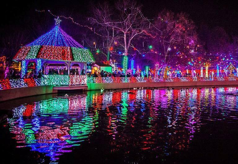 Christmas Lights at Rhema reflecting off a pond - Rhema Christmas Light Display - Family Travel Go